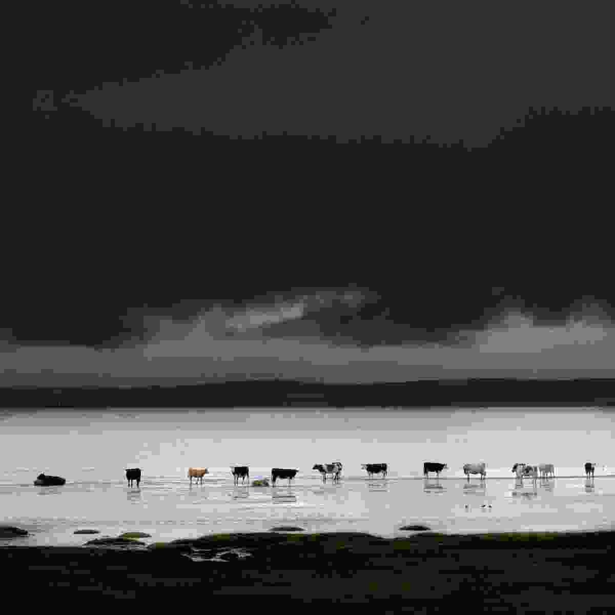 Loch Indaal, Scotland (Charlie Waite)