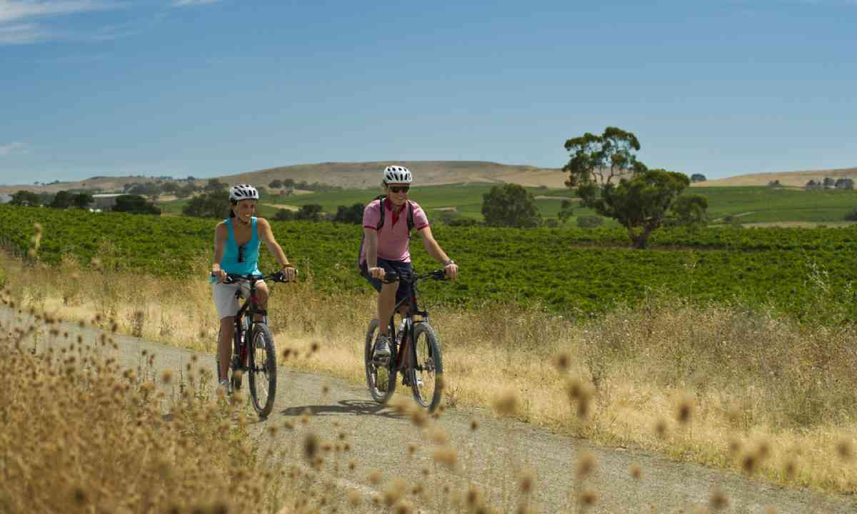 Cycling the Riesling Trail (SATC)