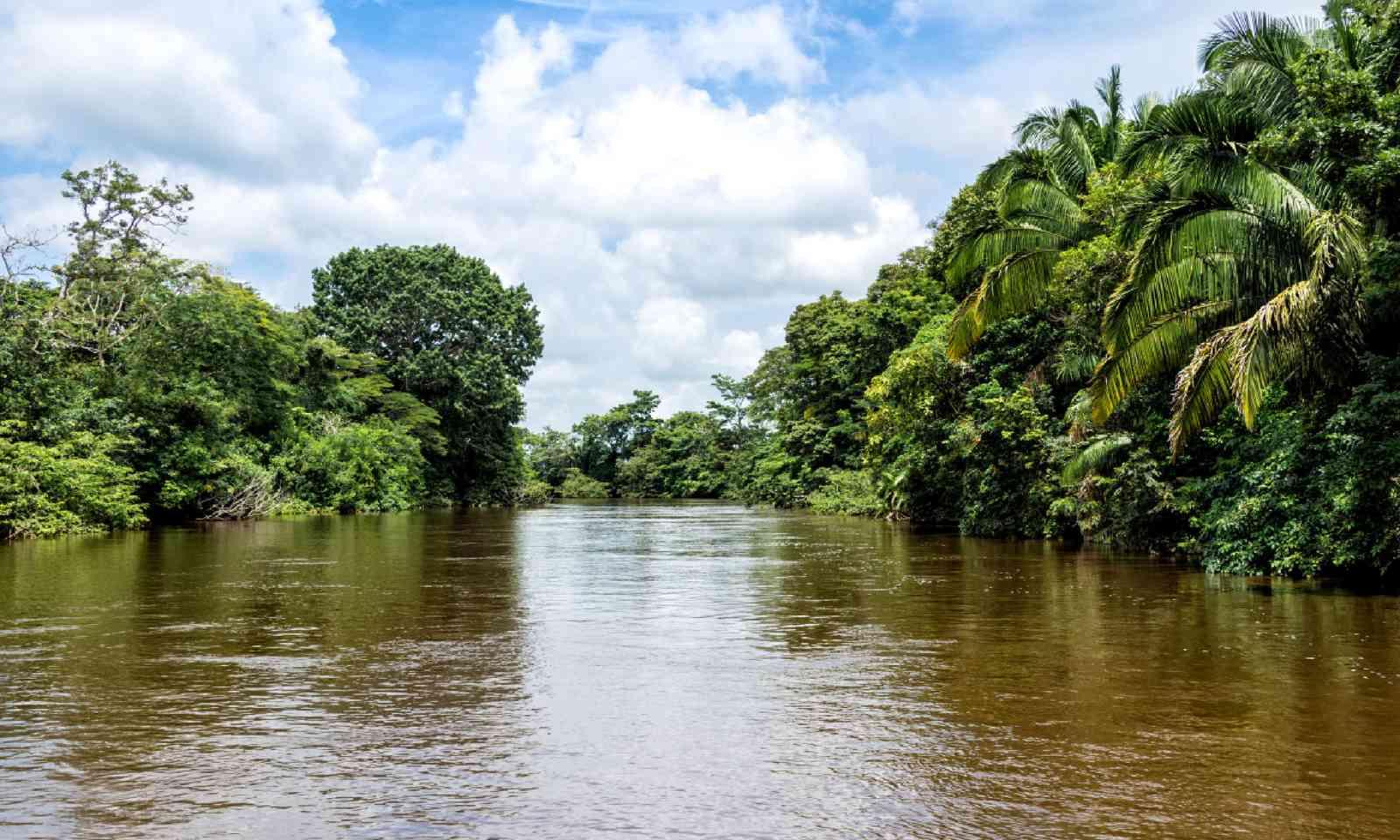 Frio River in Costa Rica (Dreamstime)