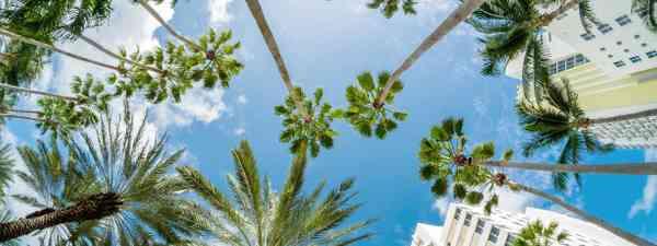 Miami Beach, Florida (Shutterstock: see credit below)