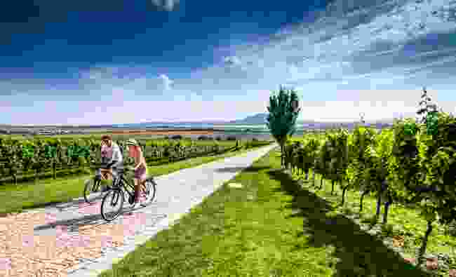Explore the wine trails (Petr Slavik)