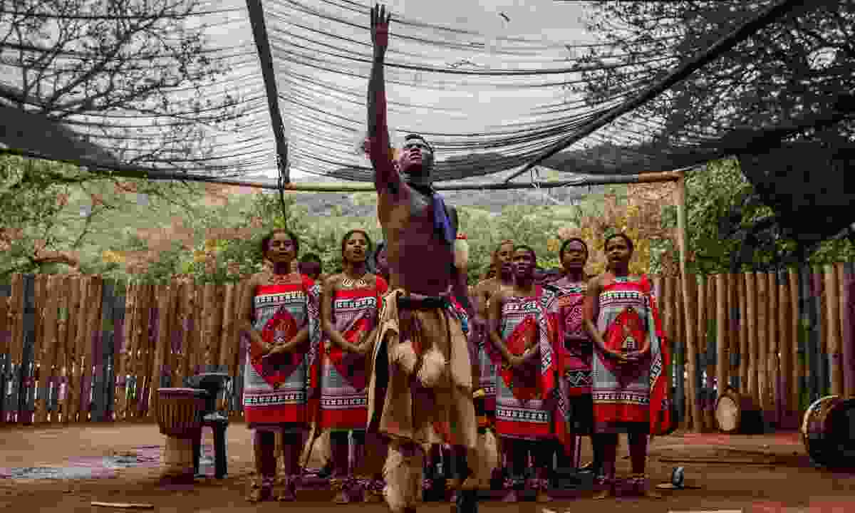 Sibahle Ngemasiko perform (Allan Dransfield)