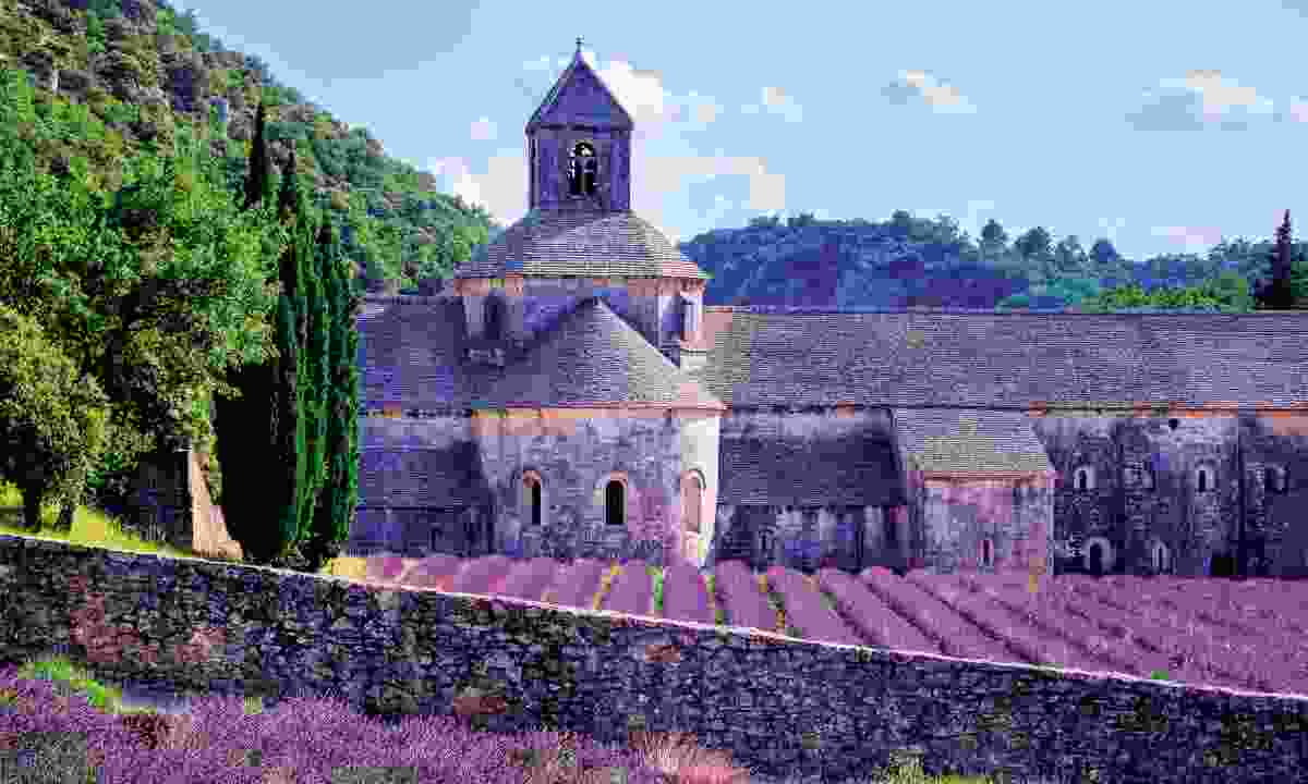 Sénanque Abbey, the home of Provence's most photographed lavender (Dreamstime)