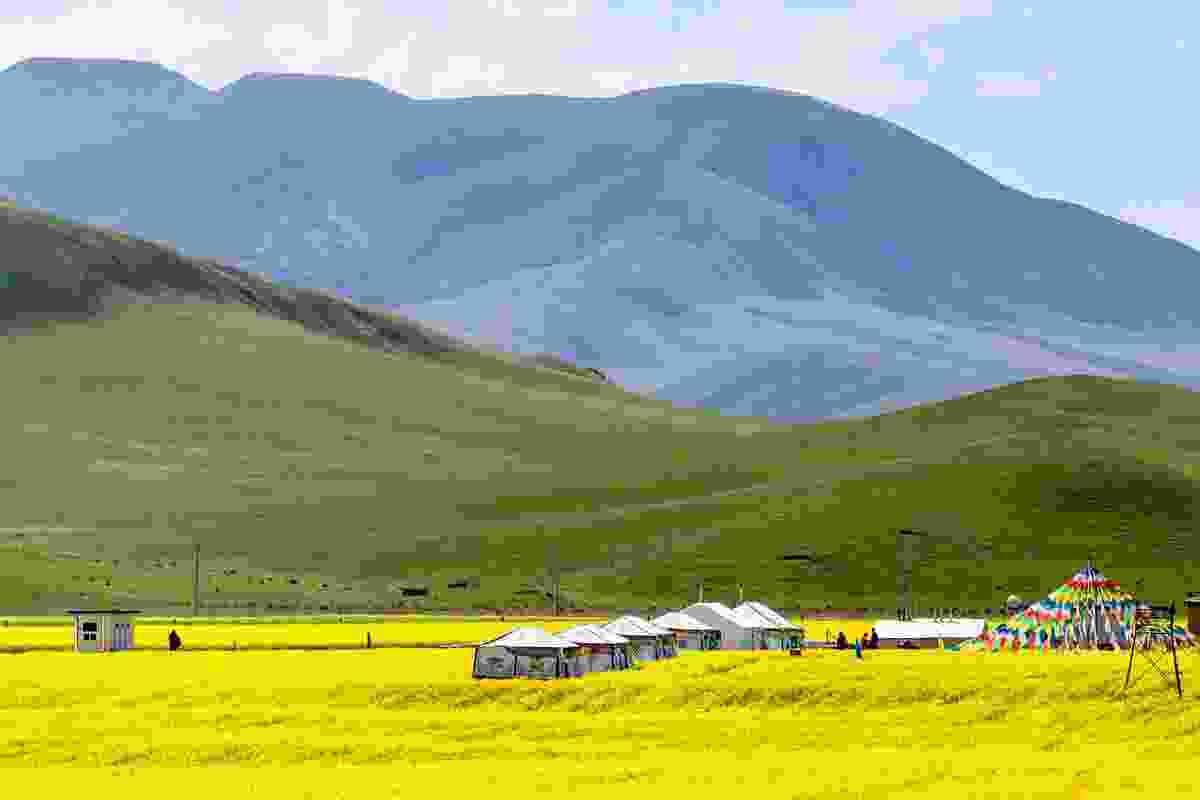 Qinghai Lake (Shutterstock)