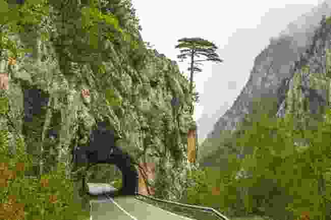 Tara Canyon underpass, Durmitor National Park, Montenegro (Shutterstock)
