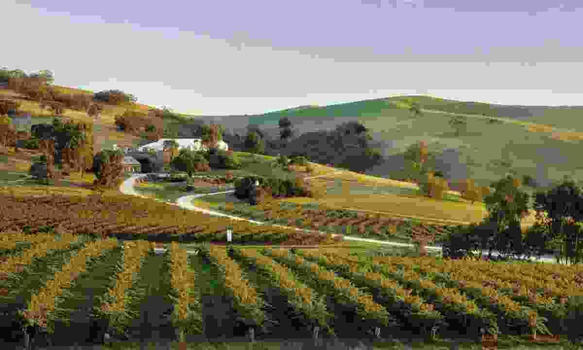 Bethany Wines, Barossa
