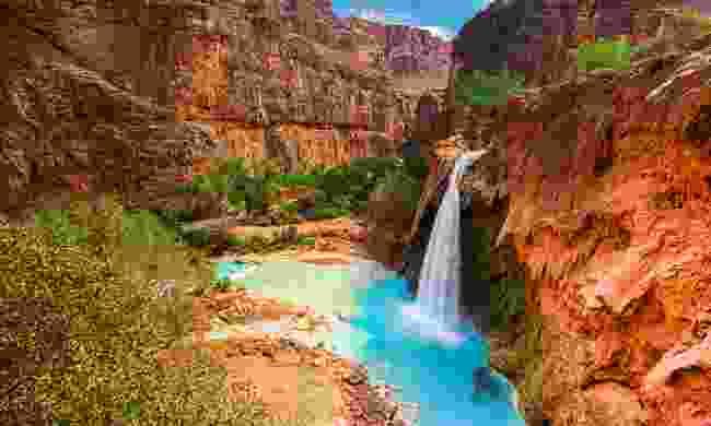 Havasu Falls (Shutterstock)