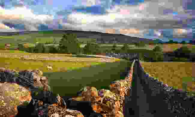 Walled path, Yorkshire Dales (Dreamstime)