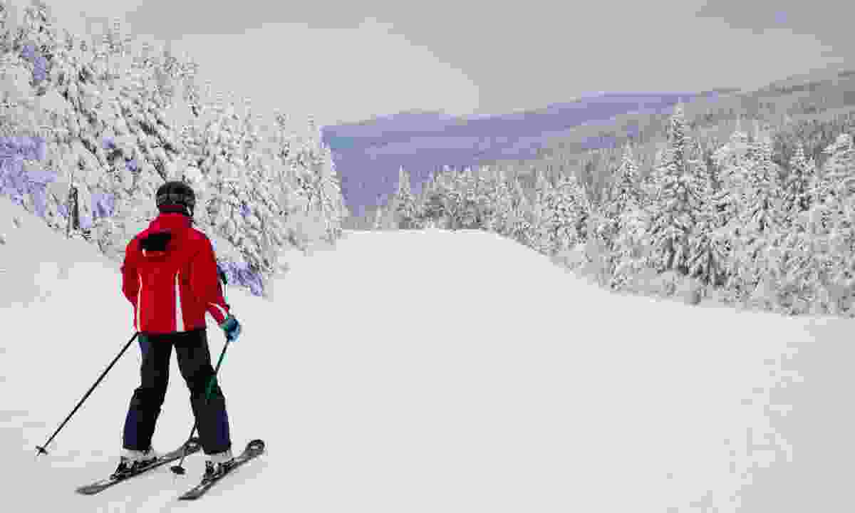 Skiing at Mont Tremblant Resort (Dreamstime)