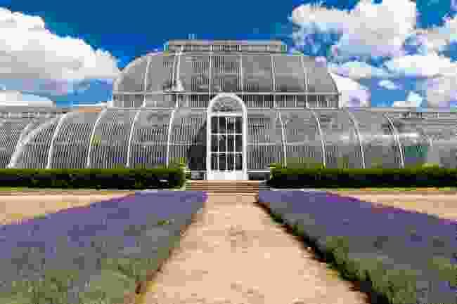 Kew Gardens Greenhouse, London (Shutterstock)