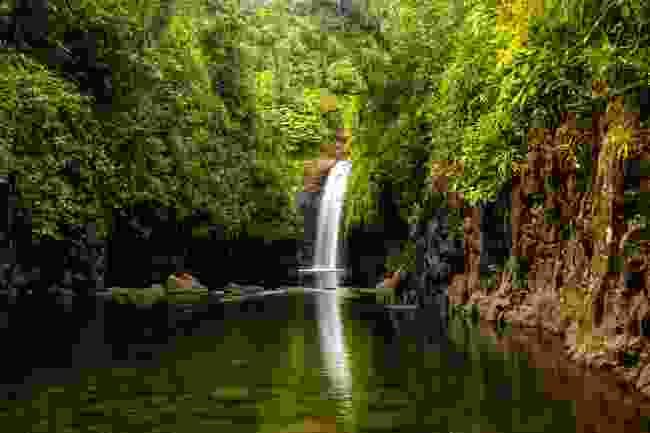 Wainibau Waterfall at the end of Lavena Coastal Walk on Taveuni Island, Fiji (Shutterstock)