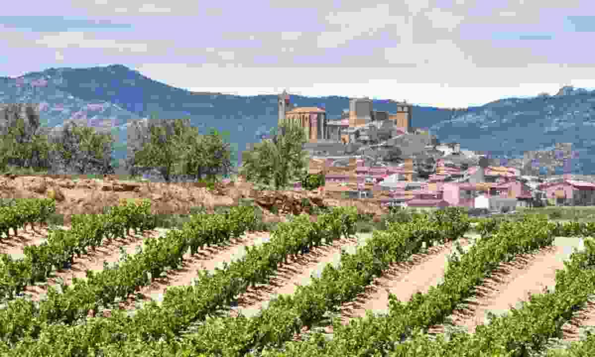 San Vicente de la Sonsierra, La Rioja, Spain (Shutterstock)