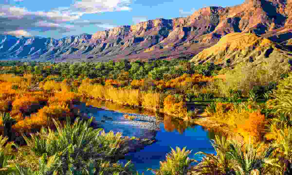 Tafilalt, Morocco (Shutterstock)