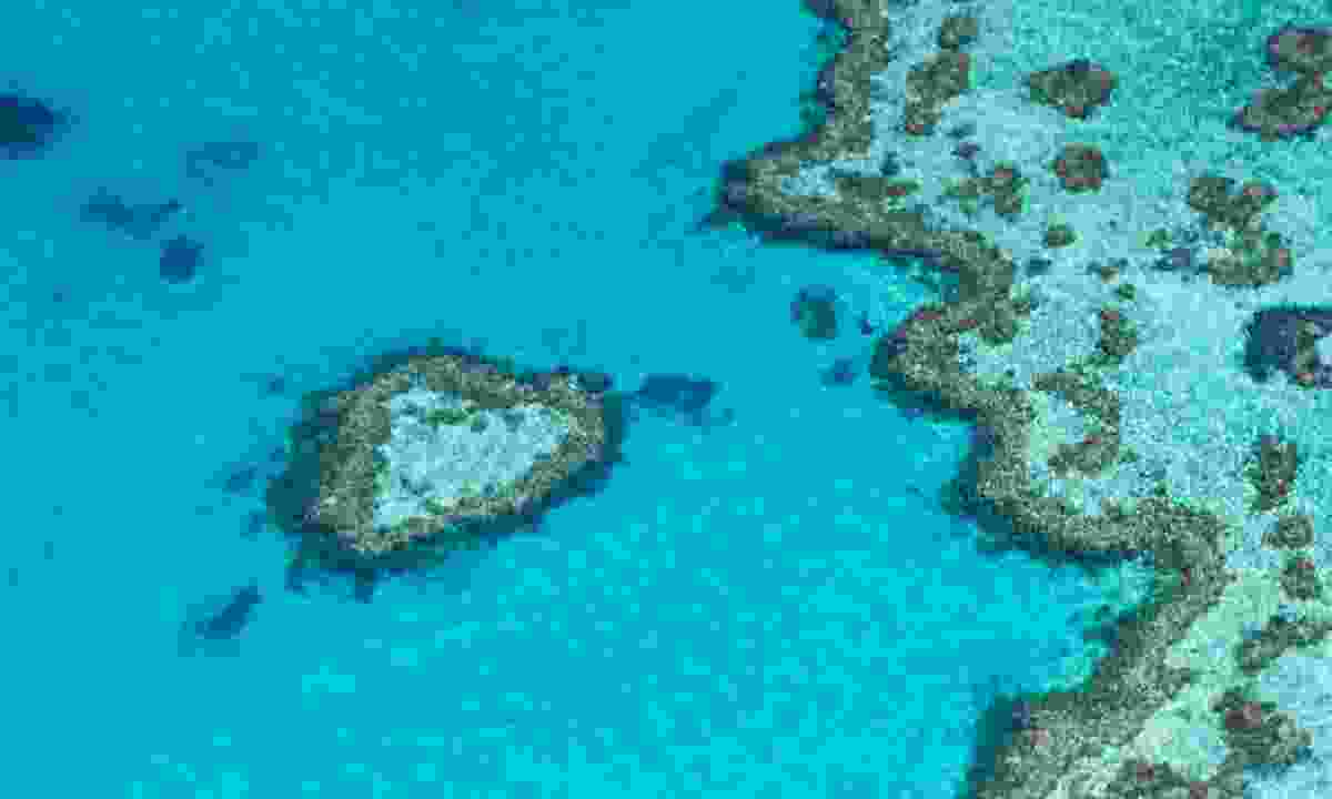 Heart reef from the air (Shutterstock)
