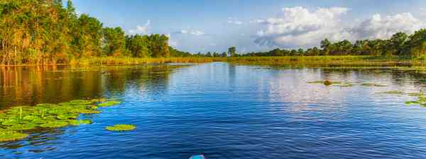 Things to see and do in Suriname (Dreamstime)
