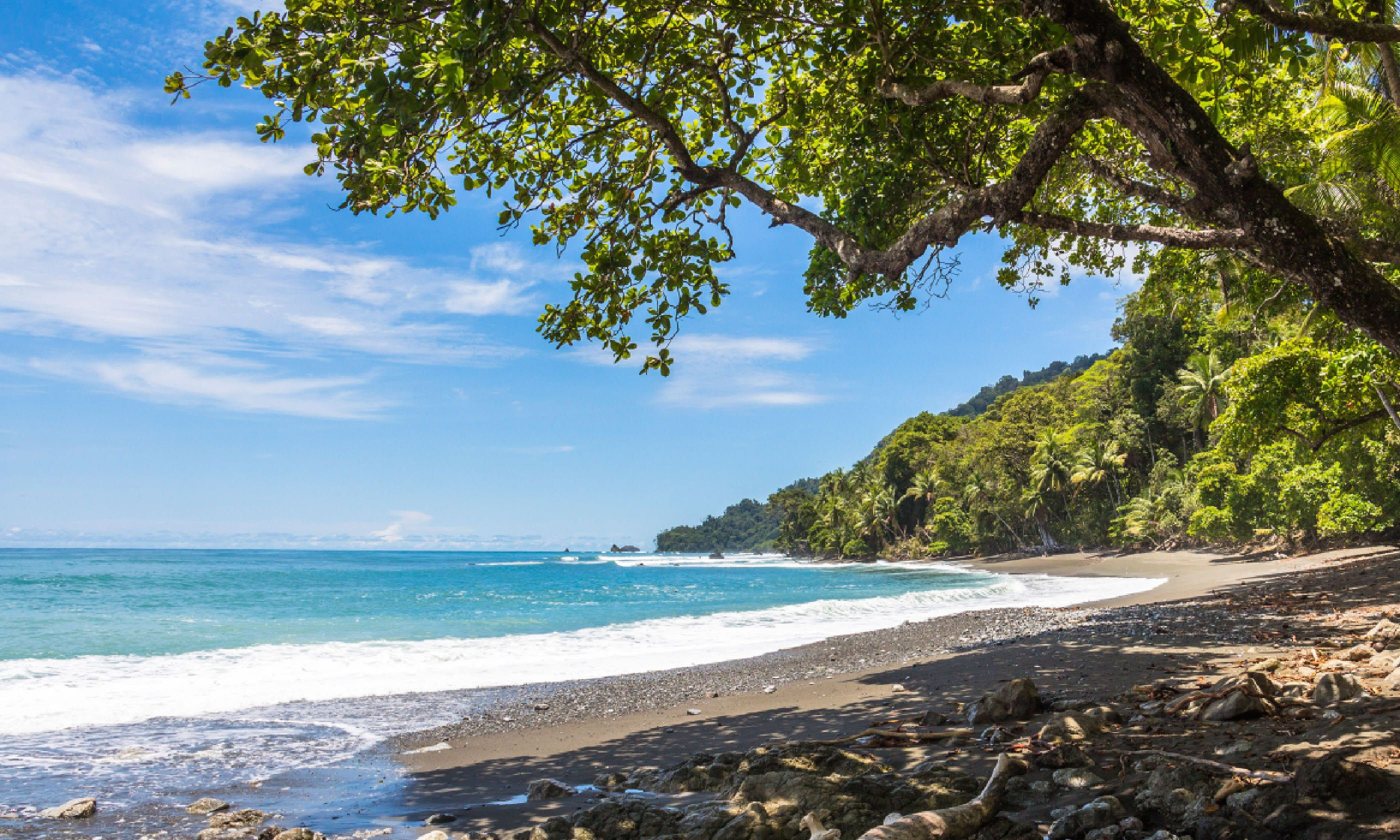 Corcovado National Park (Shutterstock)