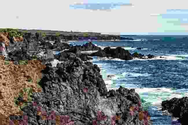 The raw, rugged Snæfellsnes coastline winds towards Öndverðarnes to the east of the peninsula (Mark Stratton)
