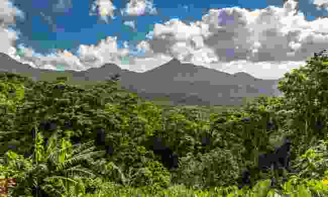 The beautiful volcanic landscape of Morne Trois Pitons National Park (Shutterstock)