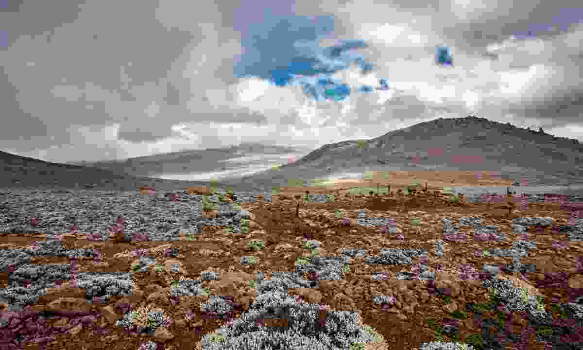 Landscape on the Sanetti Plateau in the Bale Mountains National Park in Ethiopia (Shutterstock)