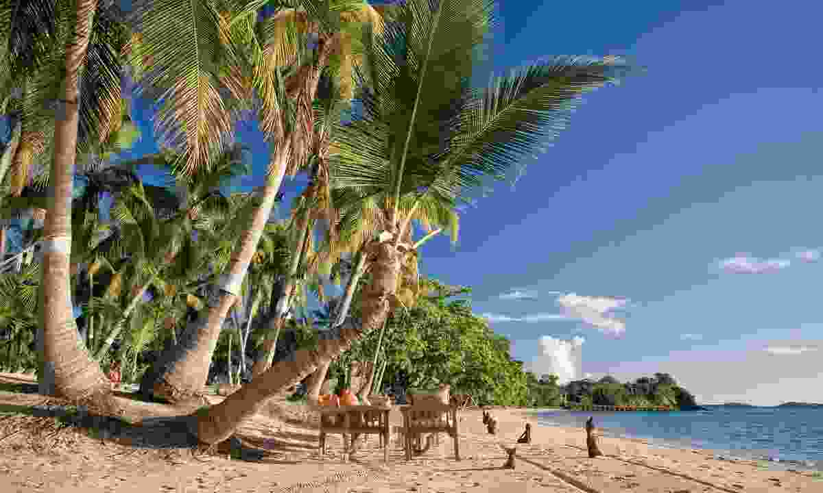 Beach in Nosy Be (Dreamstime)