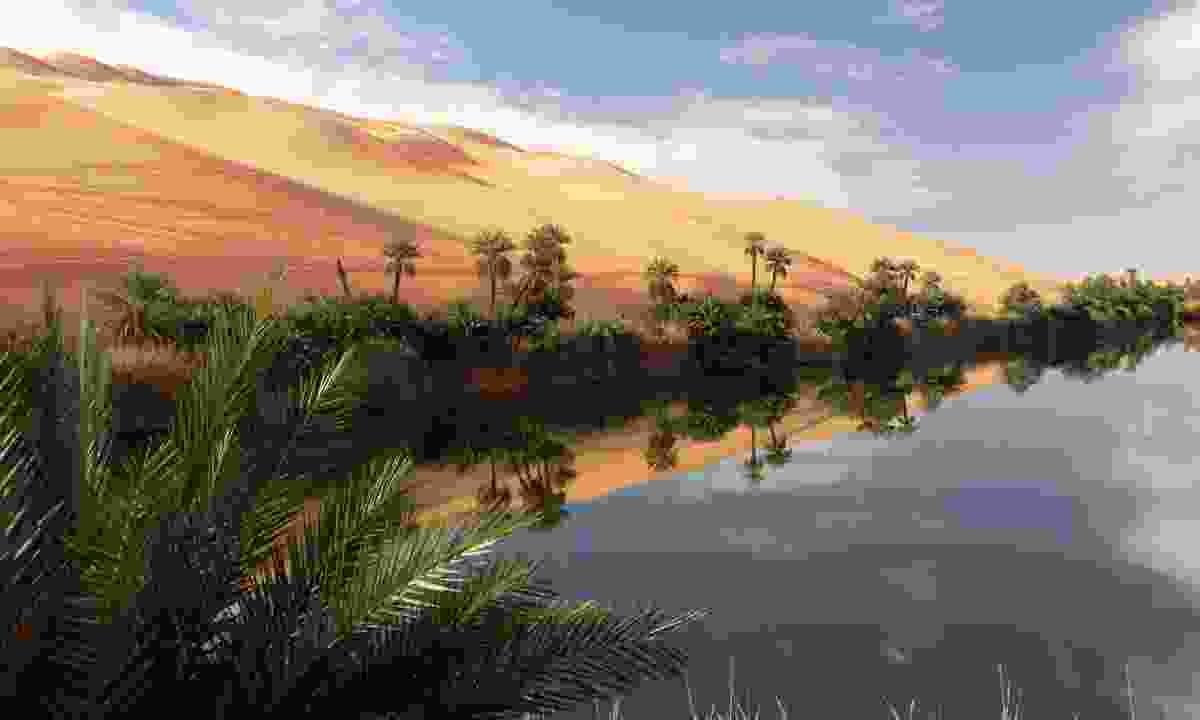 Ubari Oasis  (Shutterstock)