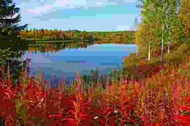 Finnish Lapland stuns in autumn (Shutterstock)