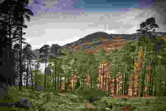 Galloway National Park, Scotland (Shutterstock)