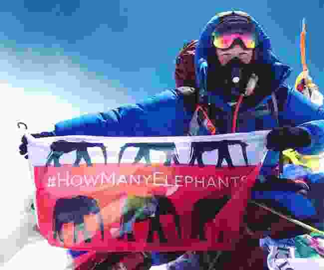 Holly showcasing the How Many Elephants logo (c/o Holly Budge)
