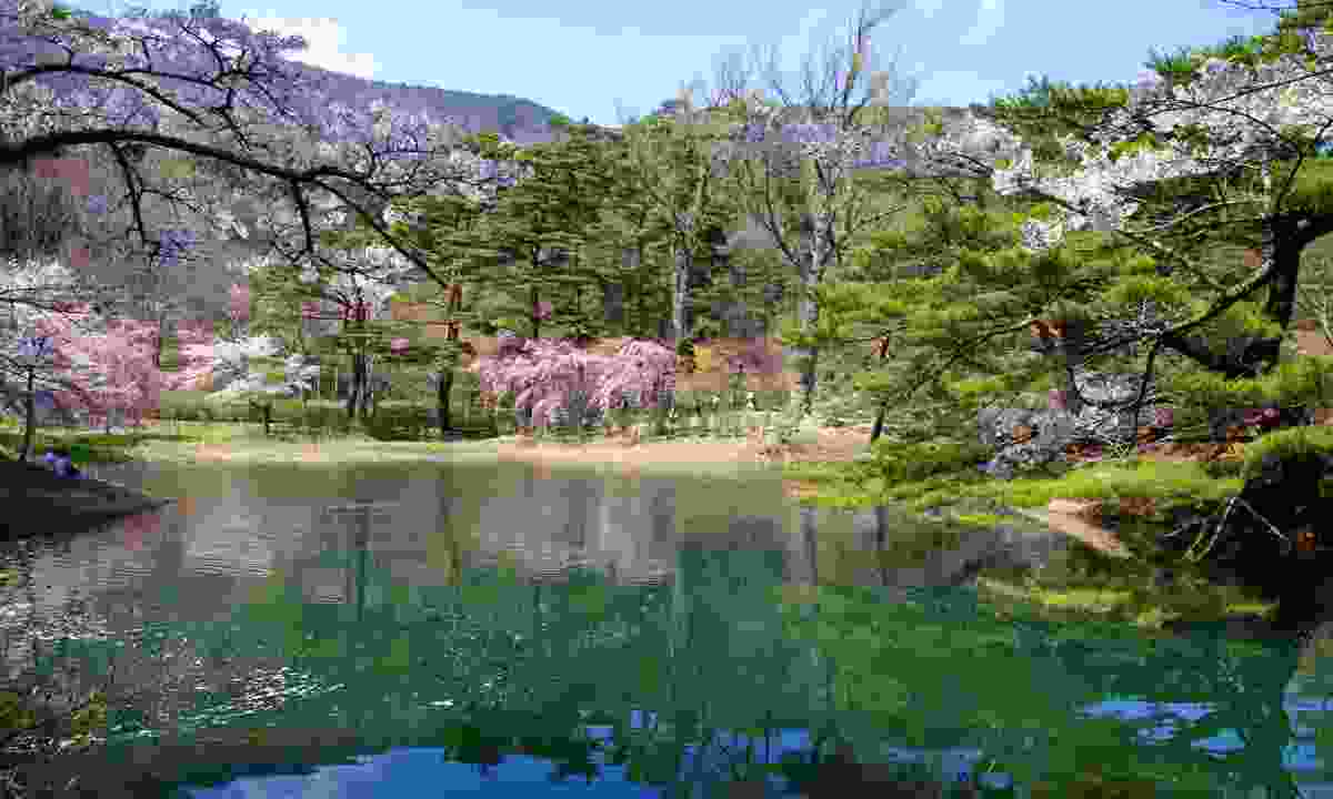 Handayama in spring (Shutterstock)