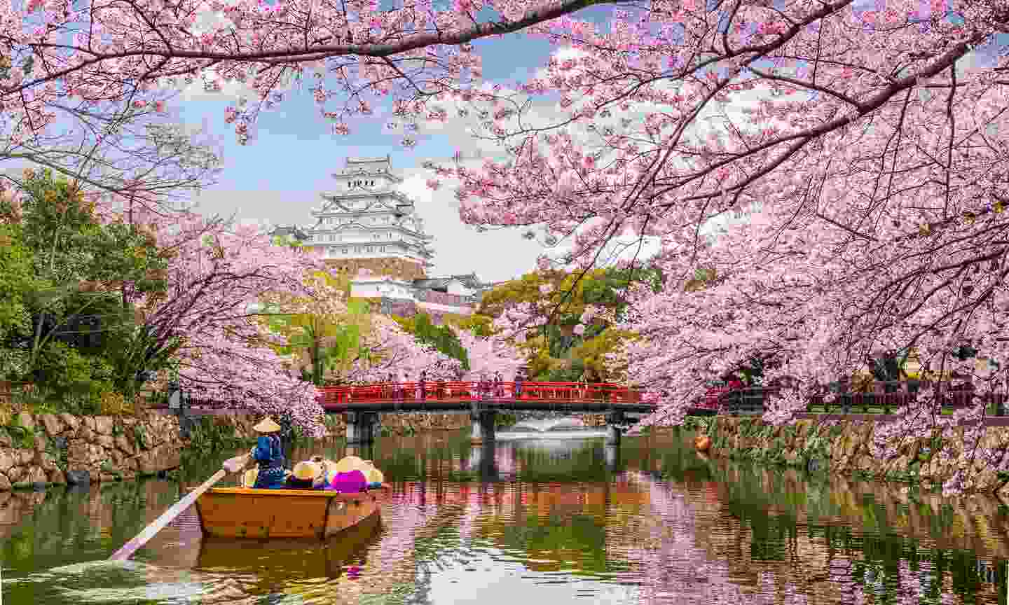Cherry blossoms without the crowds? Try Himeji Castle, Hyōgo, Japan (Shutterstock)