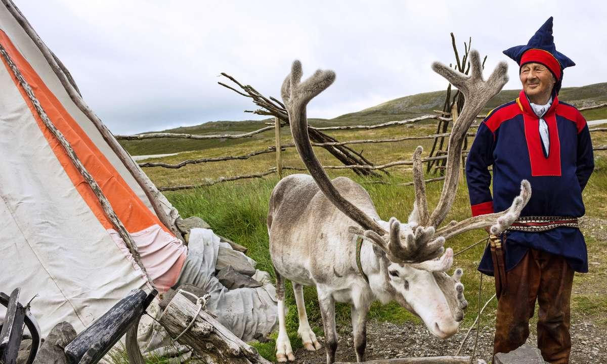 Reindeer and a member of the Sámi community (Dreamstime)