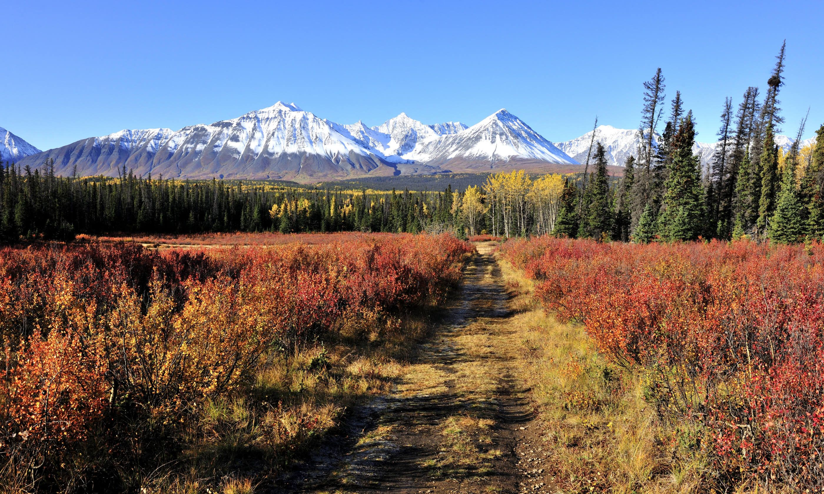 Best Places To Visit In Yukon Canada Wanderlust