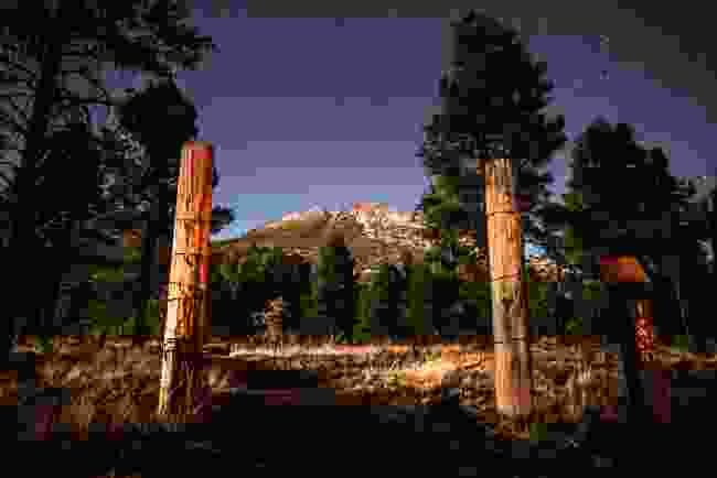 The night sky in Flagstaff, Northern Arizona (Shutterstock)