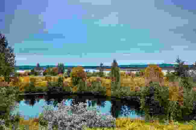 Nature in Rovaniemi, Finland during auutmn (Shutterstock)
