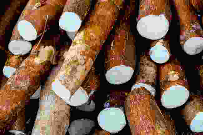 Cassava, a root vegetable often used in French Guianan dishes (Shutterstock)