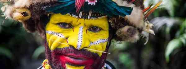 Huli tribesman in Tari (Dreamstime)