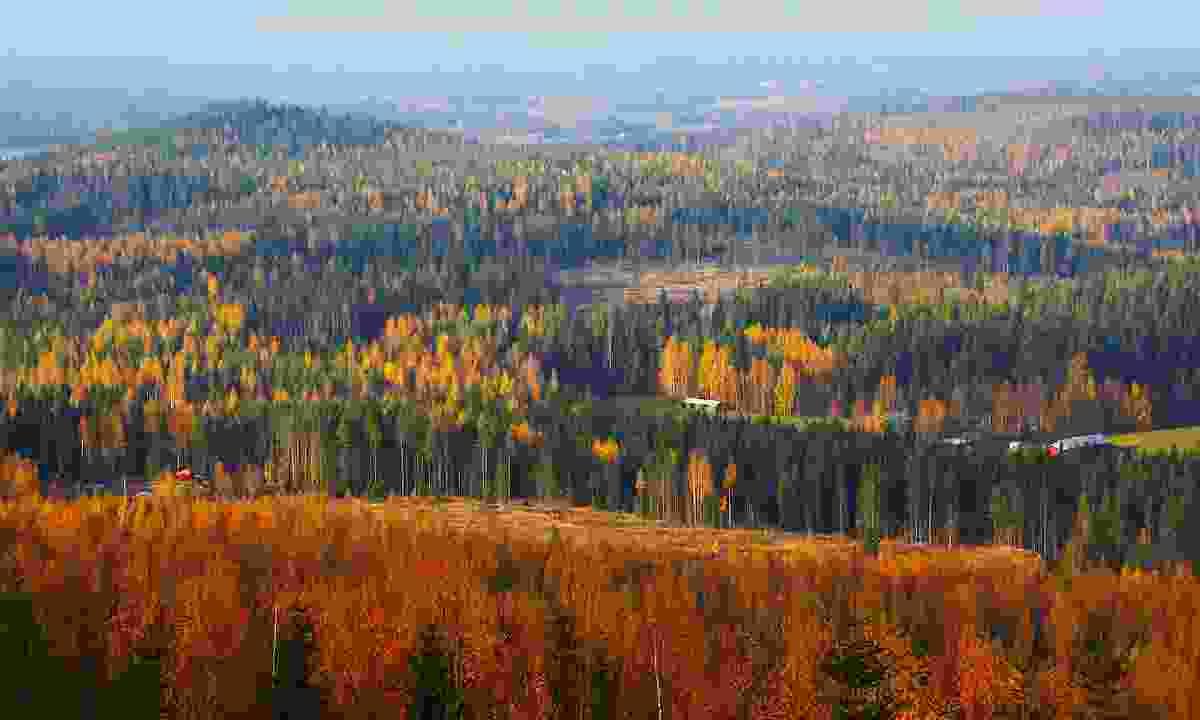 Autumn landscape, Finland (Shutterstock)