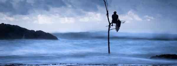 Stilt fisherman, Sri Lanka (Joshua Windsor)
