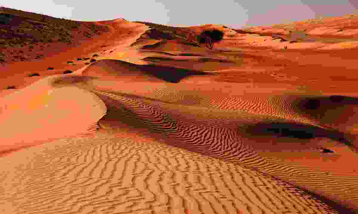 The Wahiba Sands in Oman (Shutterstock)