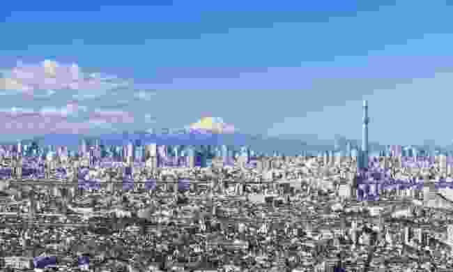 A view over Tokyo (Shutterstock)