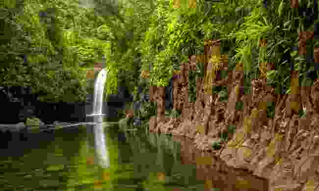 Combine birdwatching with waterfalls in the Bouma National Heritage Park (Shutterstock)