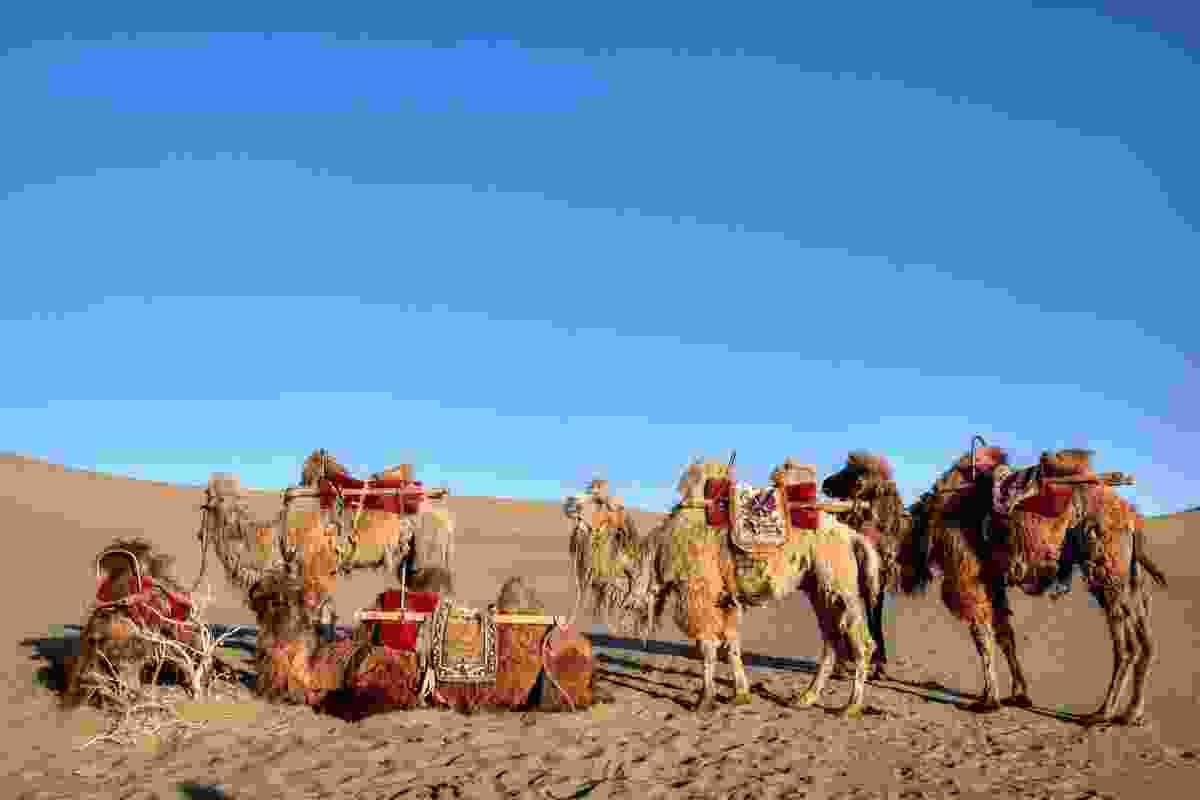 Taklamakan Desert, China (Shutterstock)