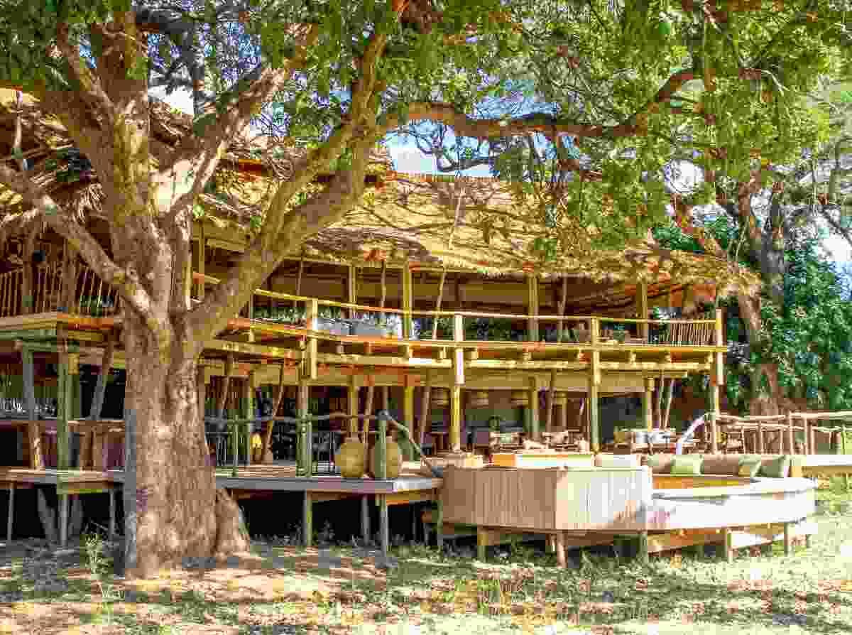 Nyamatusi Camp (Will Whitford)