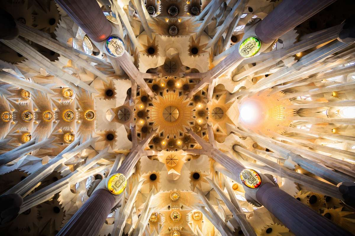 Ceiling of Sagrada Familia (Dreamstime)