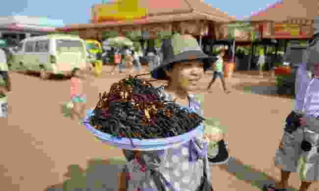 A woman selling fried tarantulas in Cambodia (Dreamstime)