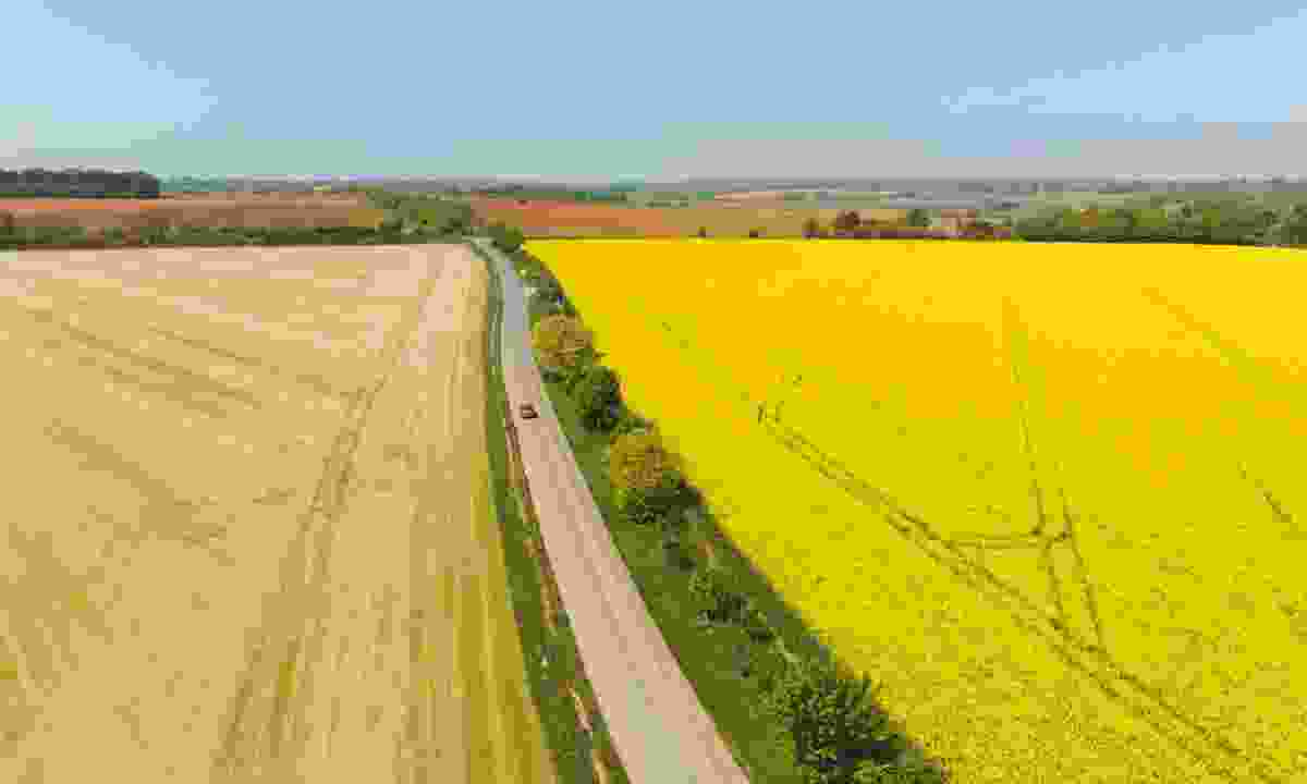 Driving through Pembrokeshire Coast National Park (Shutterstock)