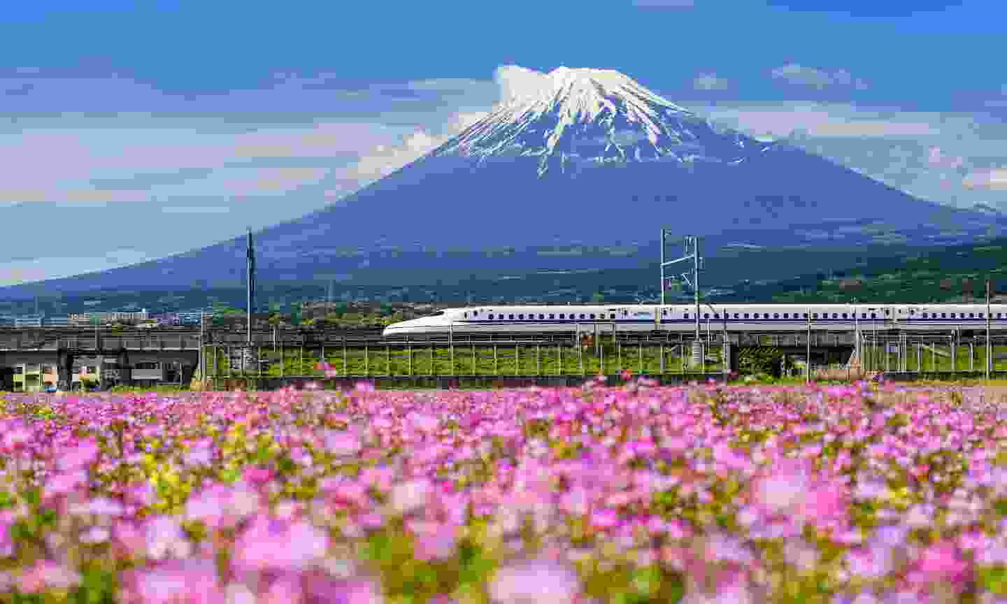 The Shinkansen in Japan (Shutterstock)