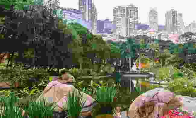 Hong Kong Park (Dreamstime)