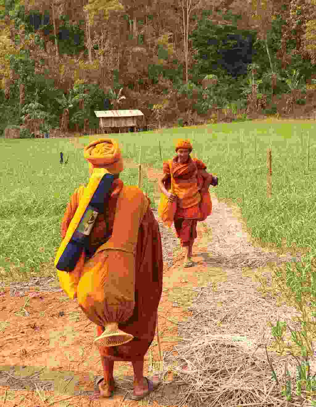 Itinerant monks from a forest monastery (Martin Symington)