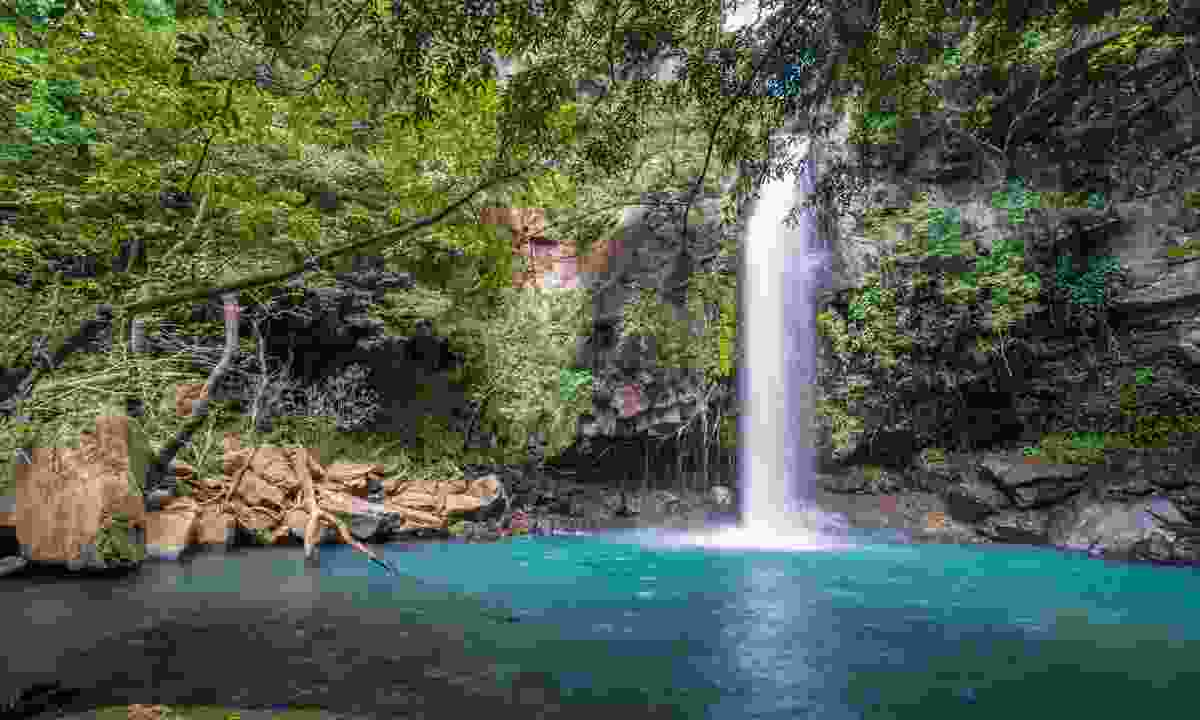 Marvel at the Celeste waterfall in Costa Rica's  Tenorio Volcano National Park